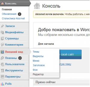 Добавление Яндекс метрики в Вордпресе